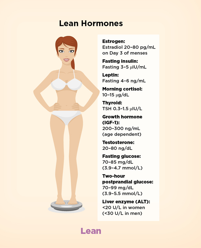 diagram-lean-hormones